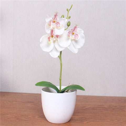 Artificial Phalaenopsis with Foam Leaf and Plastic Vase