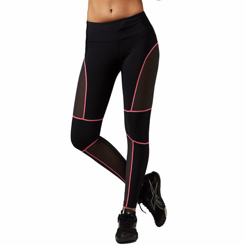 Quick Dry Meshed Color Outlined Leggings