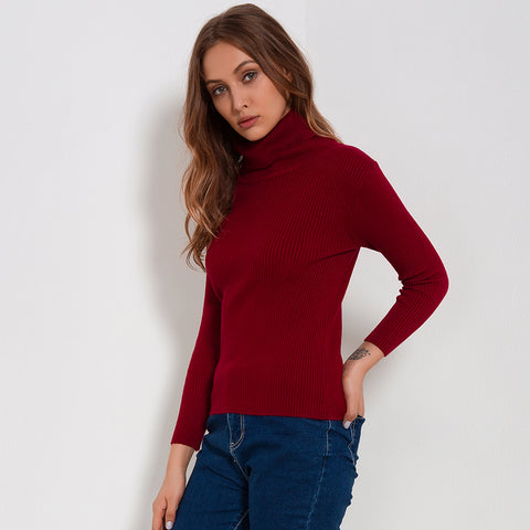Turtleneck Knitted Long Sleeve Slim Fit Sweater-women-wanahavit-Red-One Size-wanahavit