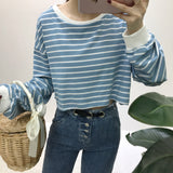 Autumn Striped Crop Top Long Sleeve