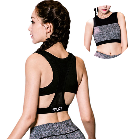 Color Accent Full Mesh Covered Back Sports Bra