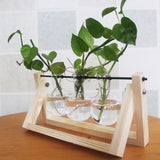 Transparent Glass Decorative Vase with Wooden Tray-home accent-wanahavit-Original-wanahavit