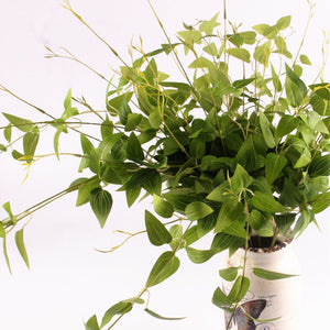 Vitality Artificial Vine Green Leaves Plant-home accent-wanahavit-1pc-wanahavit