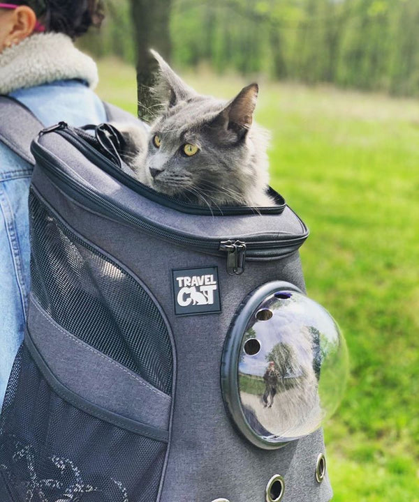 Are Cat Backpacks and Harnesses Cruel? No Way!