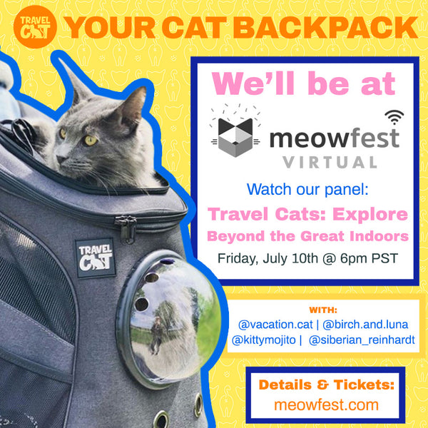 Going Beyond the Great Indoors with Travel Cat at Meowfest 2020