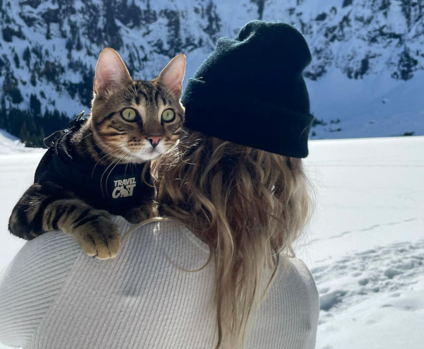 Travel Cat VIP: Hiking & Caring for the Environment with Adventure Cats Newt & Emu
