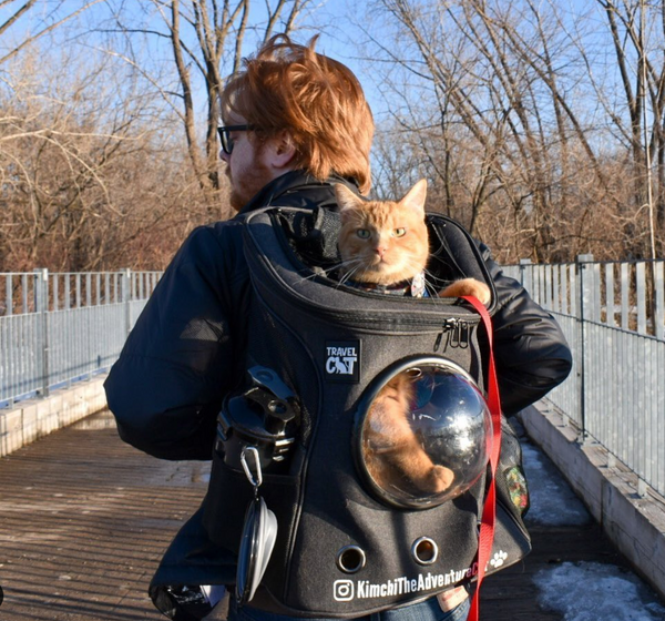 Travel Cat VIP: Cat Backpack Adventures with Kimchi