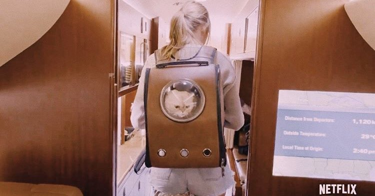 Taylor Swift Shows Off Her Cat Backpack in Miss Americana Netflix Documentary Trailer