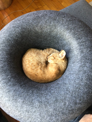 The Donut Cat Bed & Cave