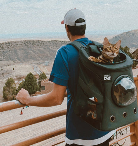 The Fat Cat Backpack Carrier