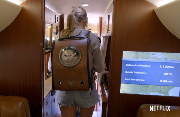 "Taylor Swift and ""The City Chic"" Leather Cat Backpack"