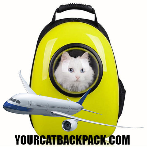 Cat Backpacks that are Carry-On Airline and Fly Compliant