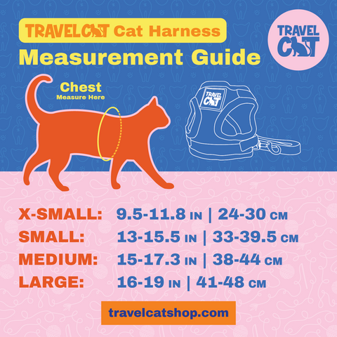 How to Measure Your Cat for Harness