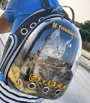 """The Voyager"" Cat Backpack"