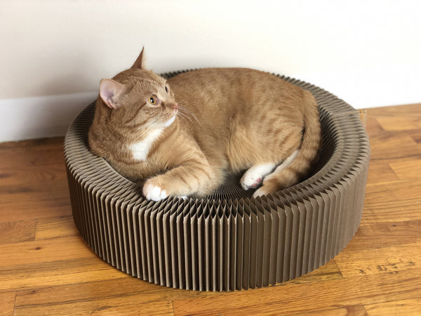 """The Accordion"" Travel Cardboard Bed & Scratcher"