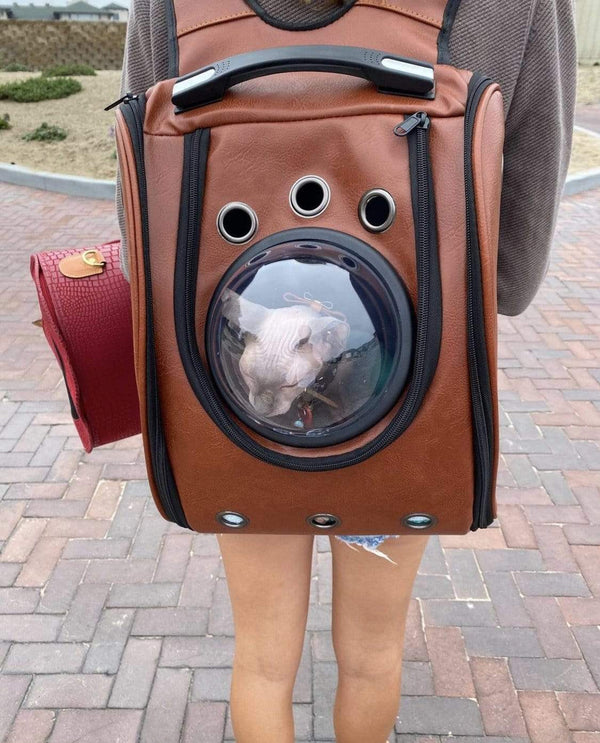 """The City Chic"" Cat Backpack"