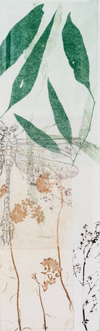 Trudy Rice_DRAGONS BANKSIAS_SERIES Dragonfly Dark Green Leaves