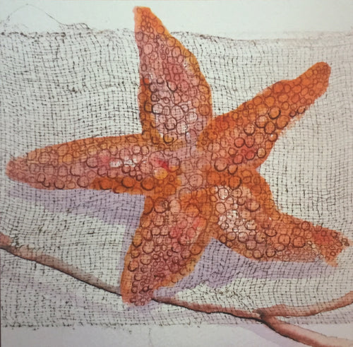 square-greeting-card-starfish