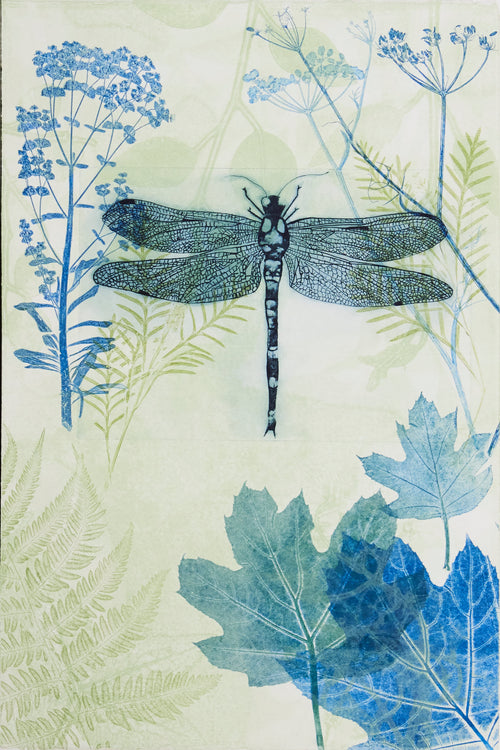 ARTWORK Dragonfly in my garden