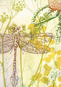 Dragonfly with Correa Greeting Card
