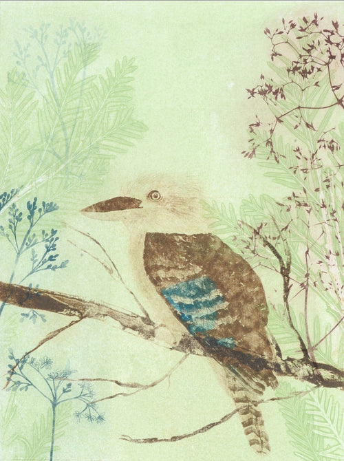 Greeting Card 'Kookaburra'