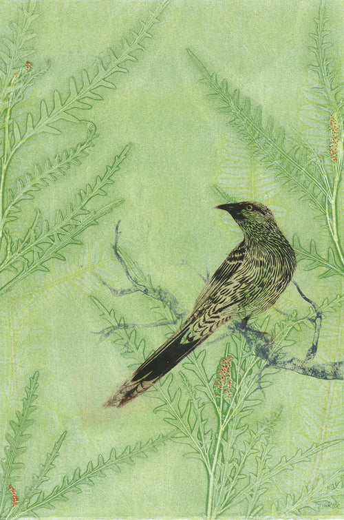 Greeting Card 'Wattlebird'