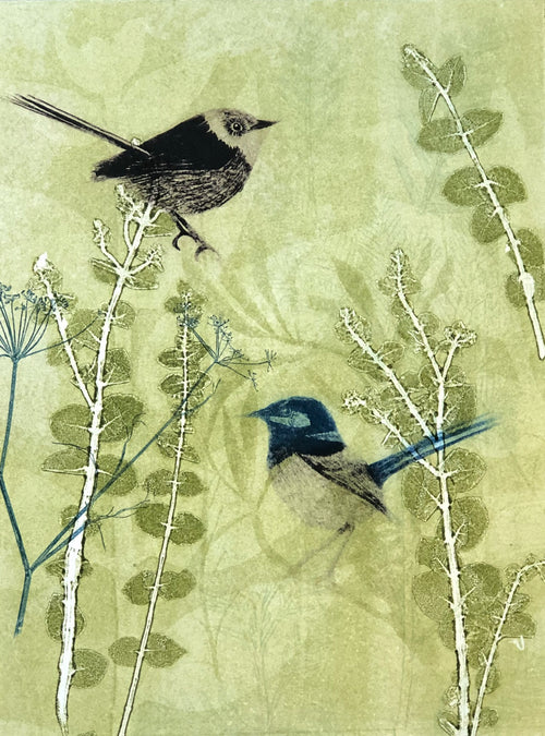 Greeting Card 'Wrens'