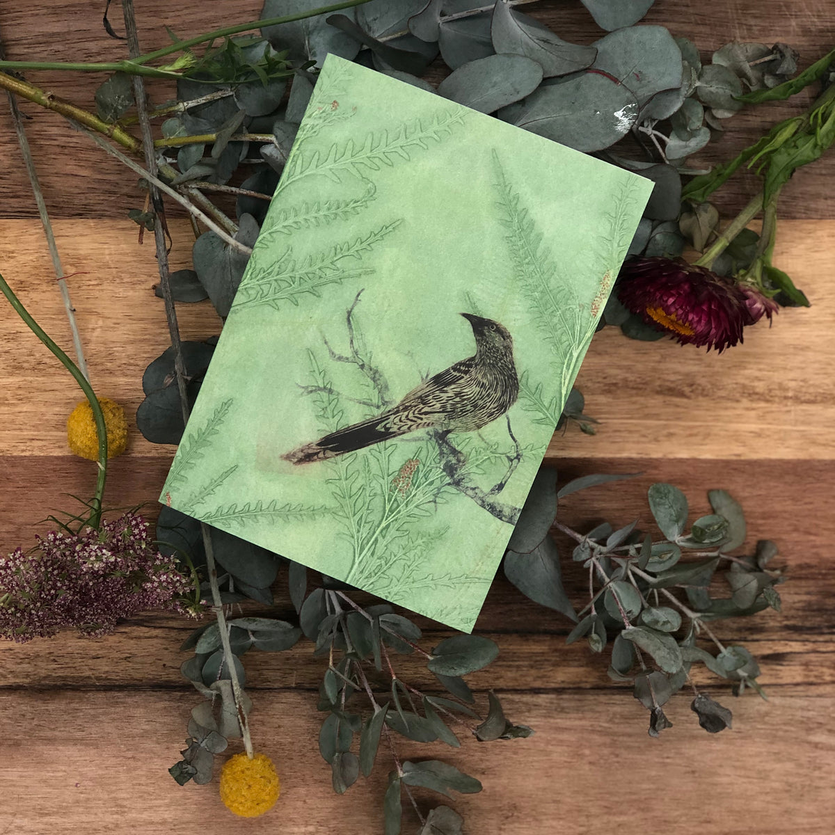 Wattlebird Greeting Card