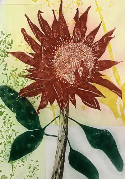 Protea Greeting Card