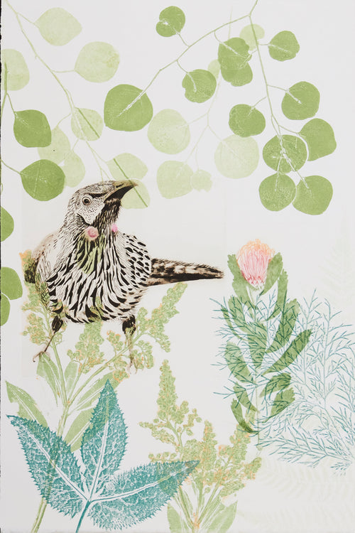 ARTWORK Wattlebird and pincushion protea