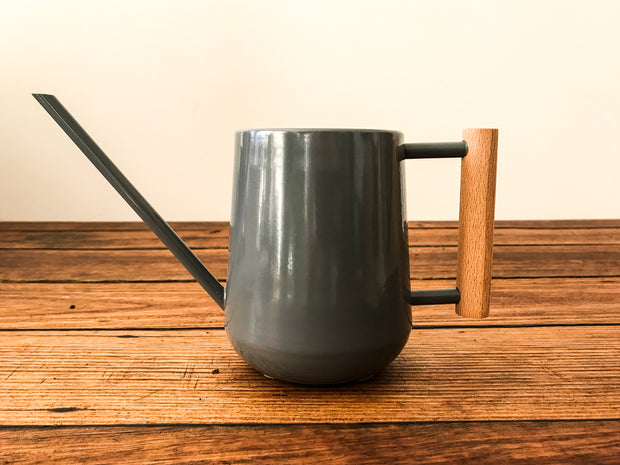Indoor Watering Can - Bosque