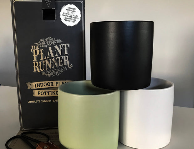 Plant Lovers Potting Box - Bosque