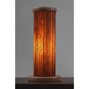 Zebra Wood Accent Light