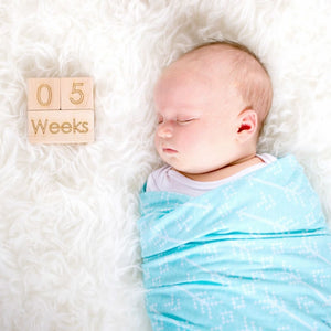 Baby Age Block Set - Monthly Wooden Milestone Blocks - Newborn Photo Prop Product