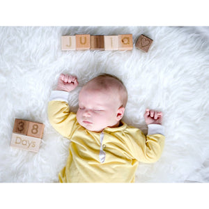 Age Blocks Photography Prop - Wood Baby Shower Gift - Maternity Photo - Nursery Decor -Bl12 Product