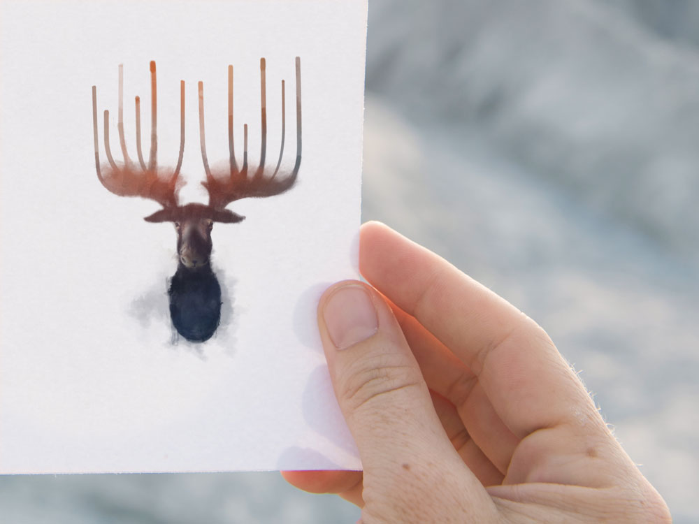 Moose in Surrealism (Set of 2)