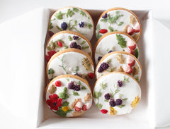Bas Relief painted cookies (set of 8)