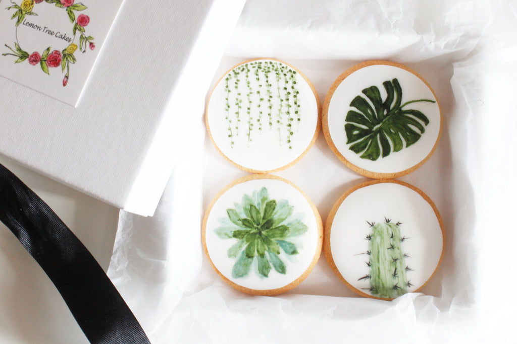 Botanical Plant Collection Gift Set of 8
