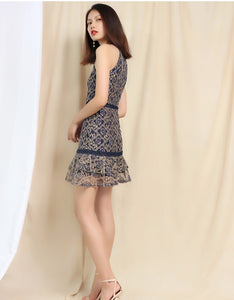 Dilia Sleeveless Lace Dress