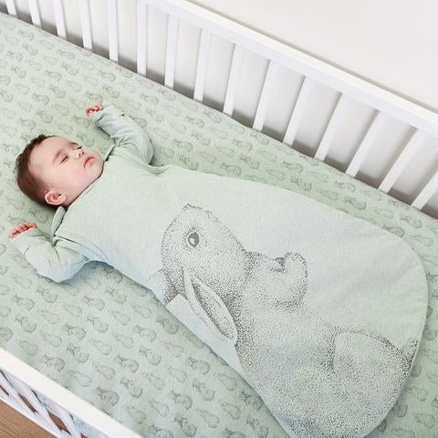 Introducing Wild Cotton from The Little Green Sheep
