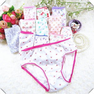 10Pcs/lot Cotton Panties Girls Kids Short Briefs Children Underwear Child Cartoon Shorts Underpants Multi / 2T