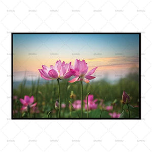 Decoration Pictures morden print No Frame Wall art Flower canvas painting home deor Wall Pictures.