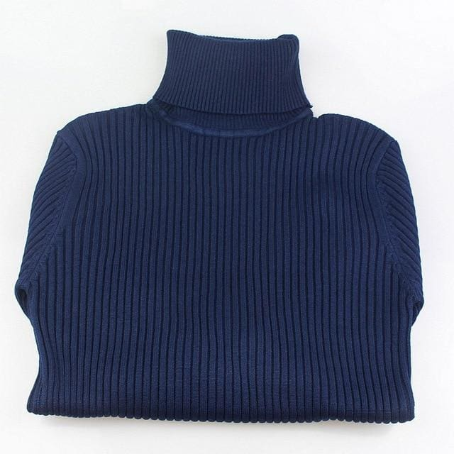 Gigogou Thick Turtleneck Warm Women Sweater Autumn Winter Knitted Femme Pull High Elasticity Soft Navy Blue / One Size