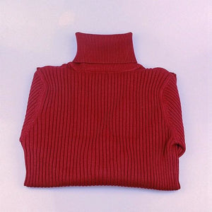 Gigogou Thick Turtleneck Warm Women Sweater Autumn Winter Knitted Femme Pull High Elasticity Soft Wine Red / One Size