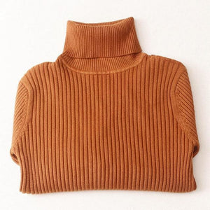 Gigogou Thick Turtleneck Warm Women Sweater Autumn Winter Knitted Femme Pull High Elasticity Soft Brown / One Size