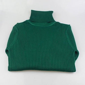 Gigogou Thick Turtleneck Warm Women Sweater Autumn Winter Knitted Femme Pull High Elasticity Soft Green / One Size