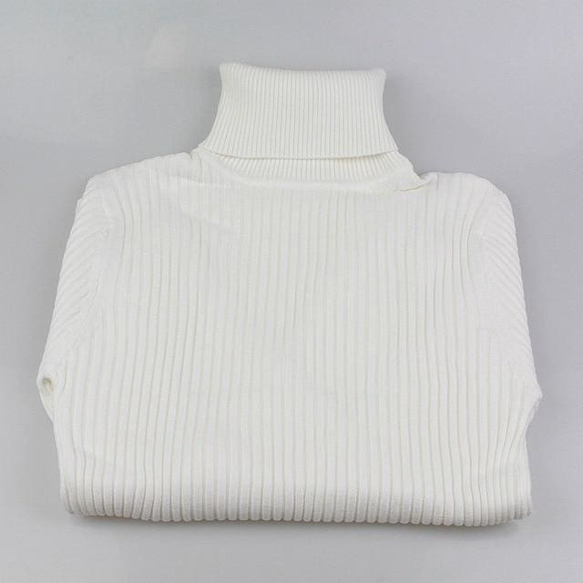 Gigogou Thick Turtleneck Warm Women Sweater Autumn Winter Knitted Femme Pull High Elasticity Soft White / One Size