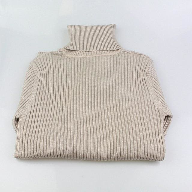 Gigogou Thick Turtleneck Warm Women Sweater Autumn Winter Knitted Femme Pull High Elasticity Soft Khaki / One Size
