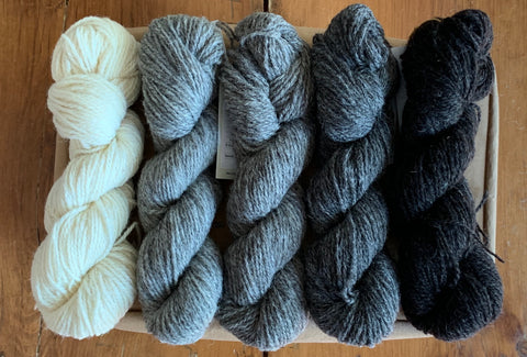 Ram Jam (Worsted) - Daughter of a Shepherd - Farm to Cable Yarns