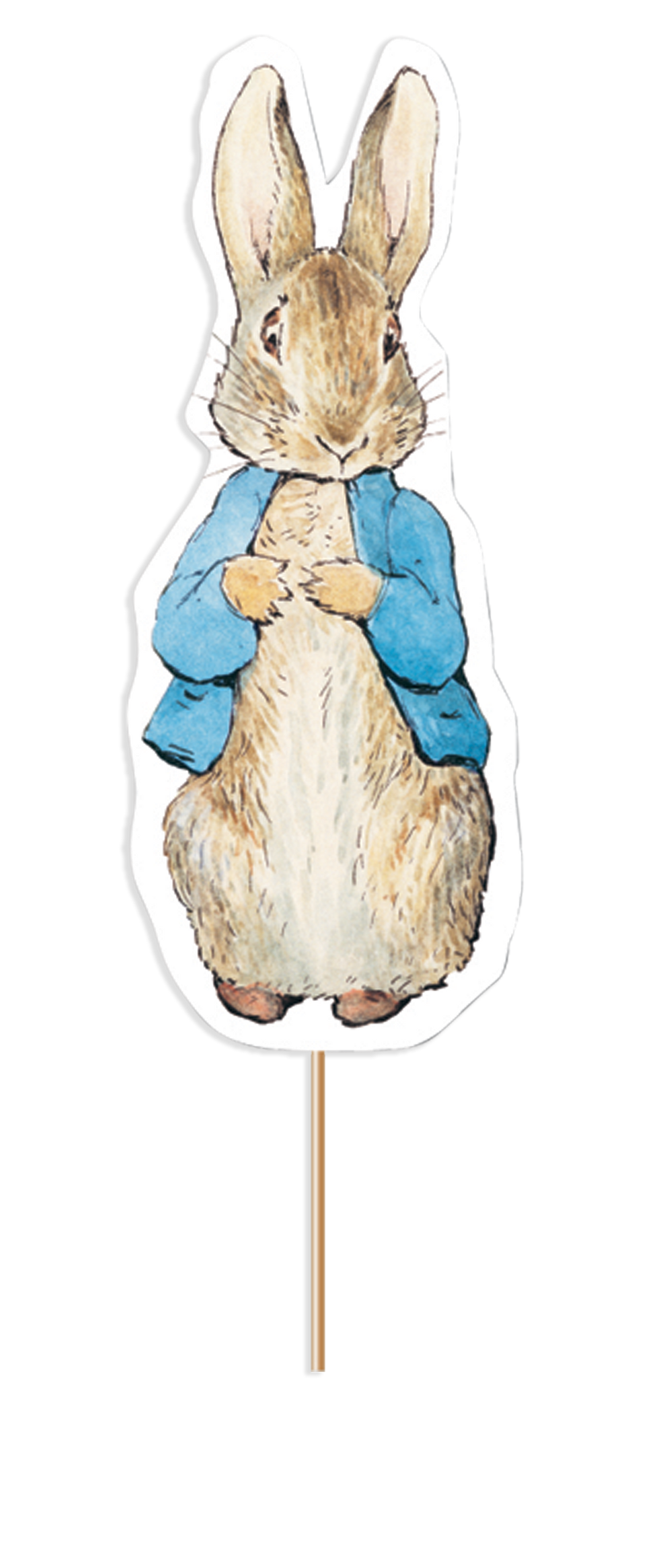 Peter Rabbit Card Cake Topper